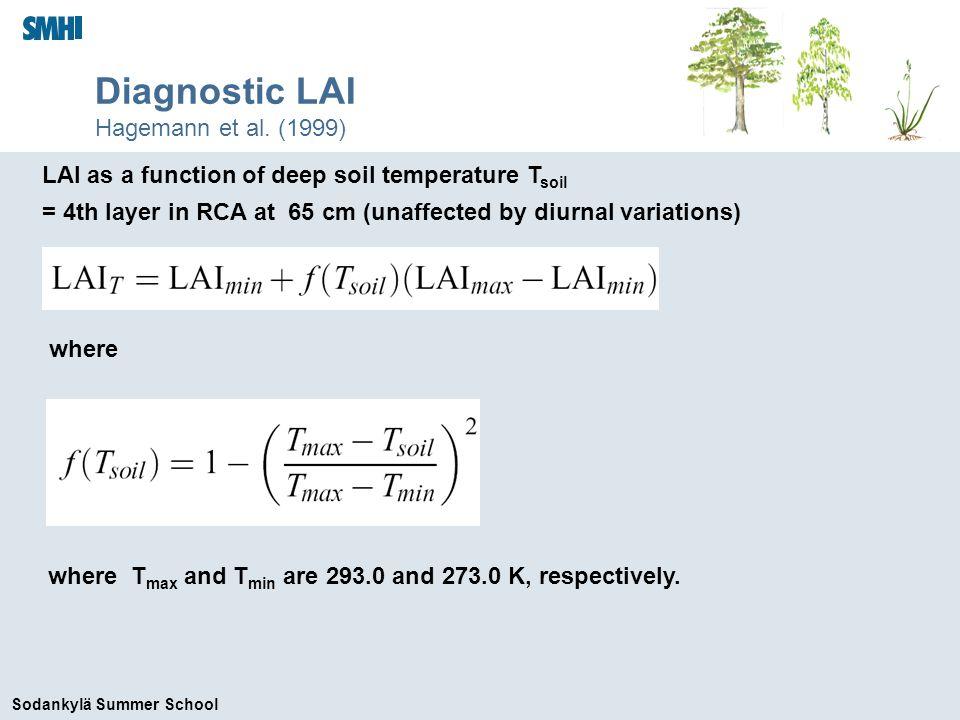 Sodankylä Summer School Diagnostic LAI Hagemann et al.