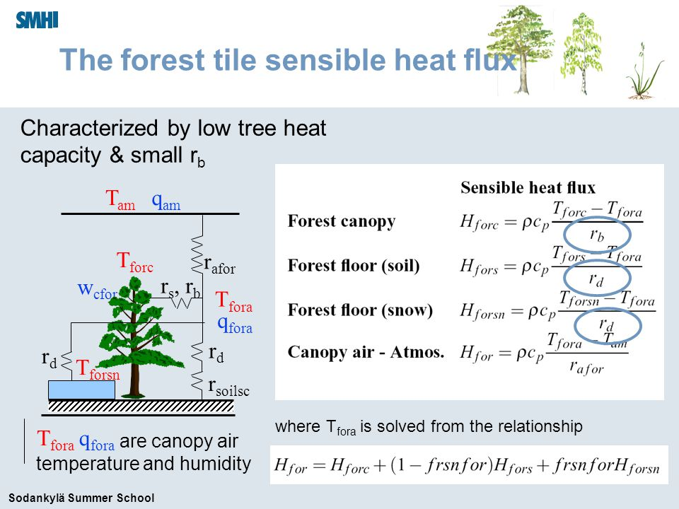 Sodankylä Summer School q fora Characterized by low tree heat capacity & small r b T am q am r afor w cfor r s, r b rdrd r soilsc T forsn rdrd T forc T fora are canopy air temperature and humidity The forest tile sensible heat flux q fora T fora where T fora is solved from the relationship
