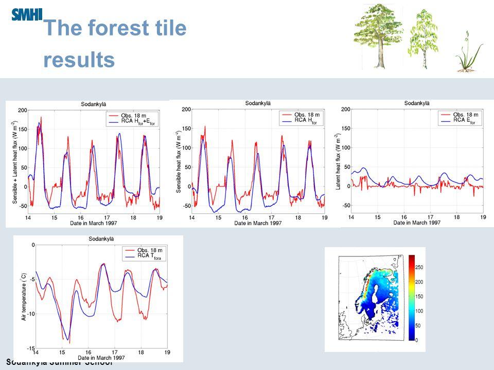 Sodankylä Summer School The forest tile results