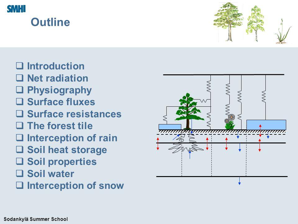 Sodankylä Summer School Interception of rain Canopy water budget Viterbo (2004)