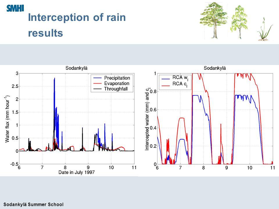 Sodankylä Summer School Interception of rain results