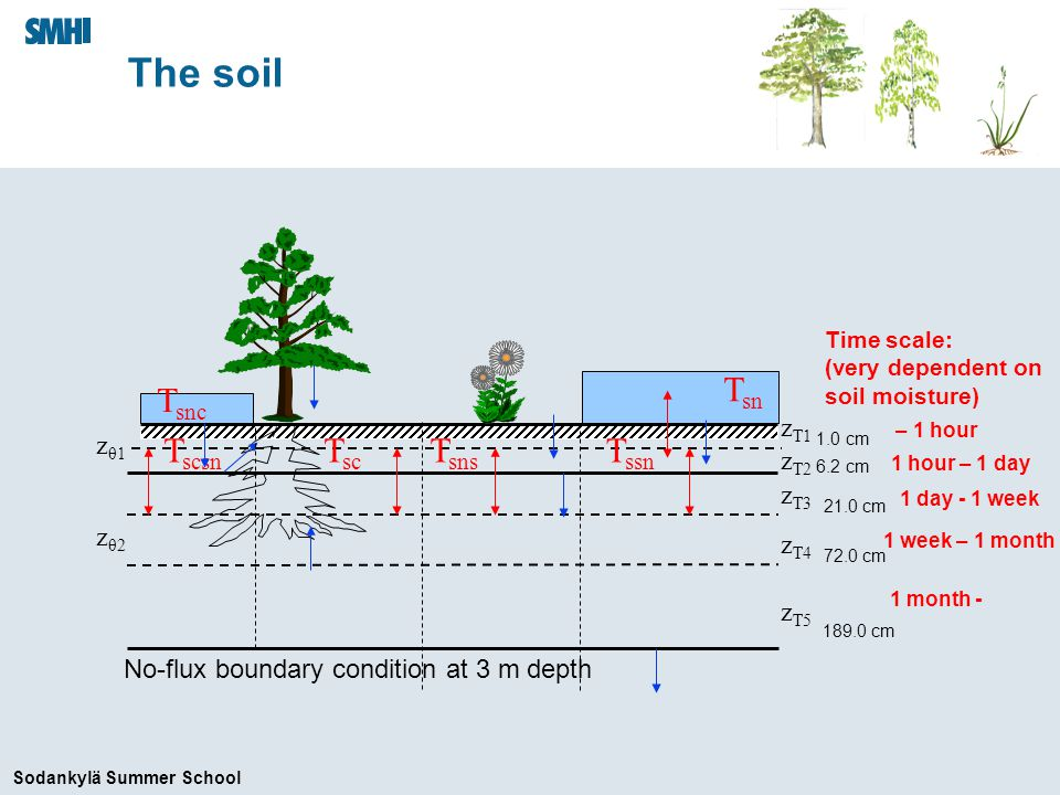 Sodankylä Summer School The soil z T1 z T2 z T3 z T4 z T5 zθ1zθ1 zθ2zθ2 T ssn T sc T sns T scsn T snc T sn No-flux boundary condition at 3 m depth Time scale: (very dependent on soil moisture) 1 month - 1 week – 1 month 1 day - 1 week – 1 hour 1 hour – 1 day 1.0 cm 6.2 cm 21.0 cm 72.0 cm 189.0 cm