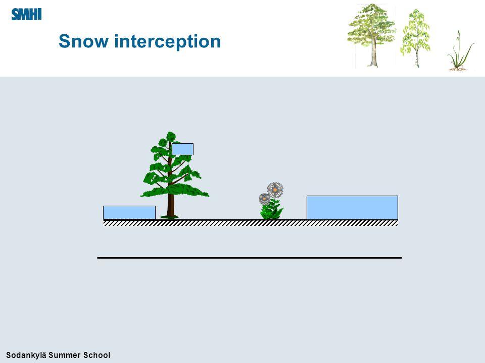 Sodankylä Summer School Snow interception