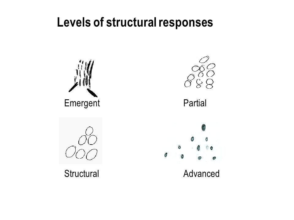 Emergent Partial StructuralAdvanced Levels of structural responses