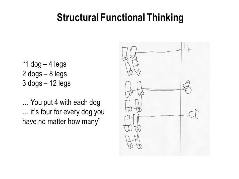 Structural Functional Thinking 1 dog – 4 legs 2 dogs – 8 legs 3 dogs – 12 legs … You put 4 with each dog … its four for every dog you have no matter h