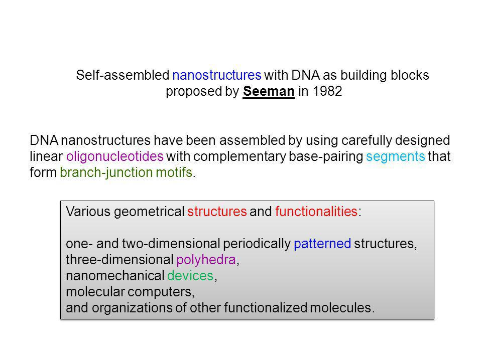 Self-assembled nanostructures with DNA as building blocks proposed by Seeman in 1982 DNA nanostructures have been assembled by using carefully designed linear oligonucleotides with complementary base-pairing segments that form branch-junction motifs.