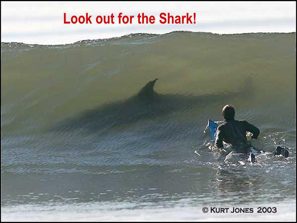 © 2004 APC corporation. And of course… Look out for the Shark!