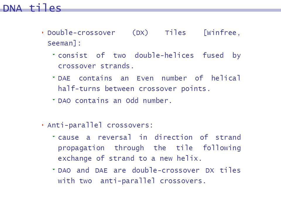 Double-crossover (DX) Tiles [Winfree, Seeman]: consist of two double-helices fused by crossover strands. DAE contains an Even number of helical half-t