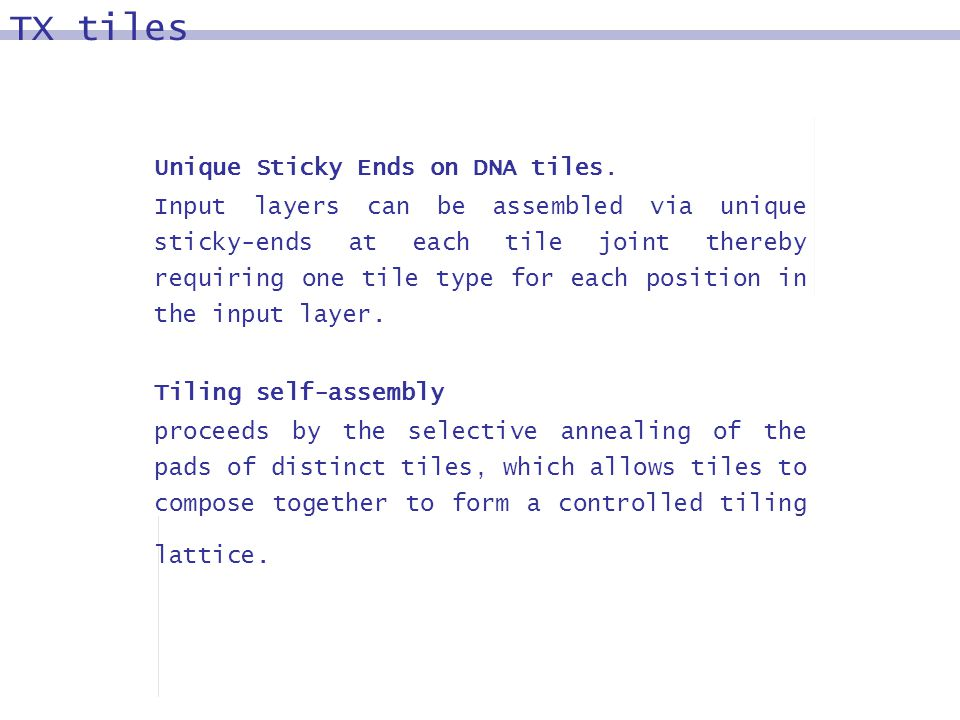 Unique Sticky Ends on DNA tiles. Input layers can be assembled via unique sticky-ends at each tile joint thereby requiring one tile type for each posi