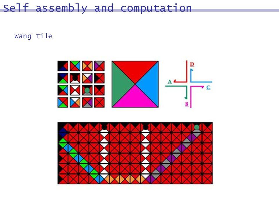 Wang Tile Self assembly and computation
