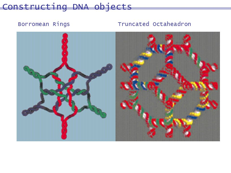 Borromean RingsTruncated Octaheadron