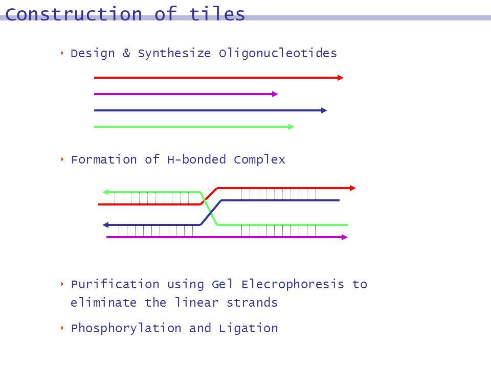 Design & Synthesize Oligonucleotides Formation of H-bonded Complex Purification using Gel Elecrophoresis to eliminate the linear strands Phosphorylation and Ligation Construction of tiles