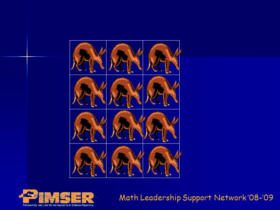 Math Leadership Support Network 08-09