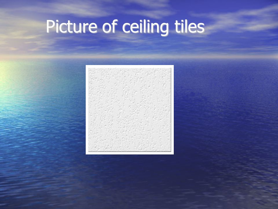 Picture of ceiling tiles