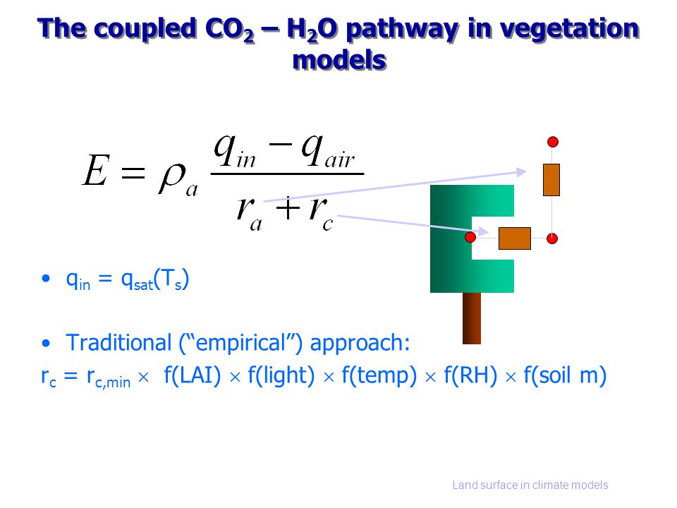Land surface in climate models The coupled CO 2 – H 2 O pathway in vegetation models q in = q sat (T s ) Traditional (empirical) approach: r c = r c,min f(LAI) f(light) f(temp) f(RH) f(soil m)