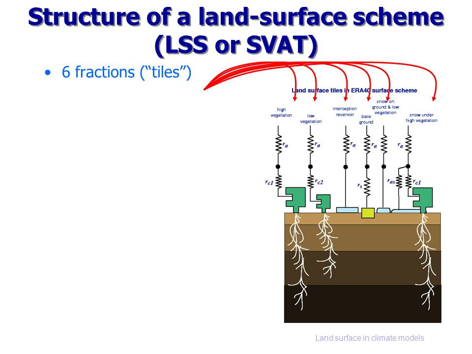 Land surface in climate models Structure of a land-surface scheme (LSS or SVAT) 6 fractions (tiles) Aerodynamic coupling Vegetatie –Verdampingsweerstand –Wortelzone –Neerslaginterceptie Kale grond Sneeuw