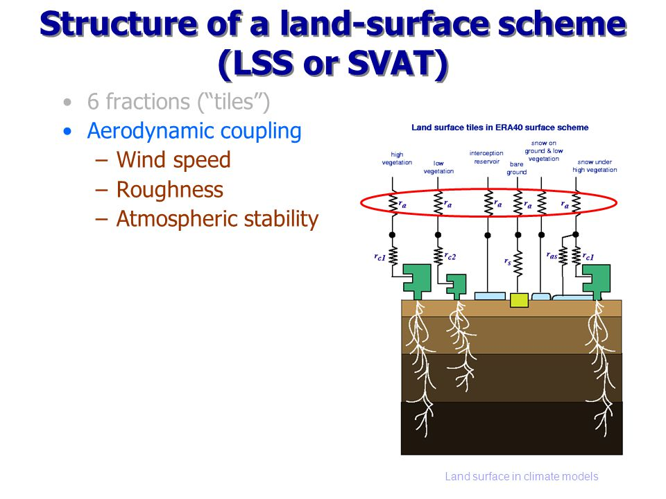 Land surface in climate models Structure of a land-surface scheme (LSS or SVAT) 6 fractions (tiles) Aerodynamic coupling –Wind speed –Roughness –Atmos