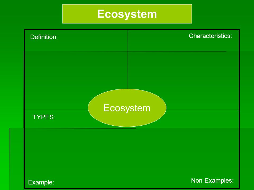 Ecosystem Definition: Characteristics: Example: Non-Examples: Ecosystem TYPES:
