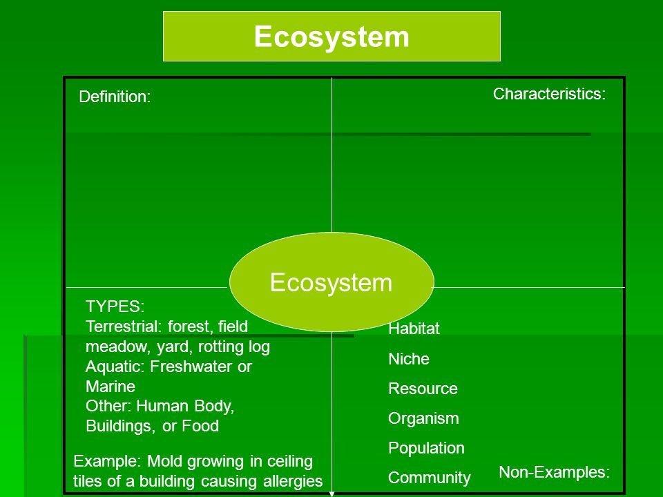 Ecosystem Definition: Characteristics: Example: Mold growing in ceiling tiles of a building causing allergies Non-Examples: Ecosystem TYPES: Terrestri