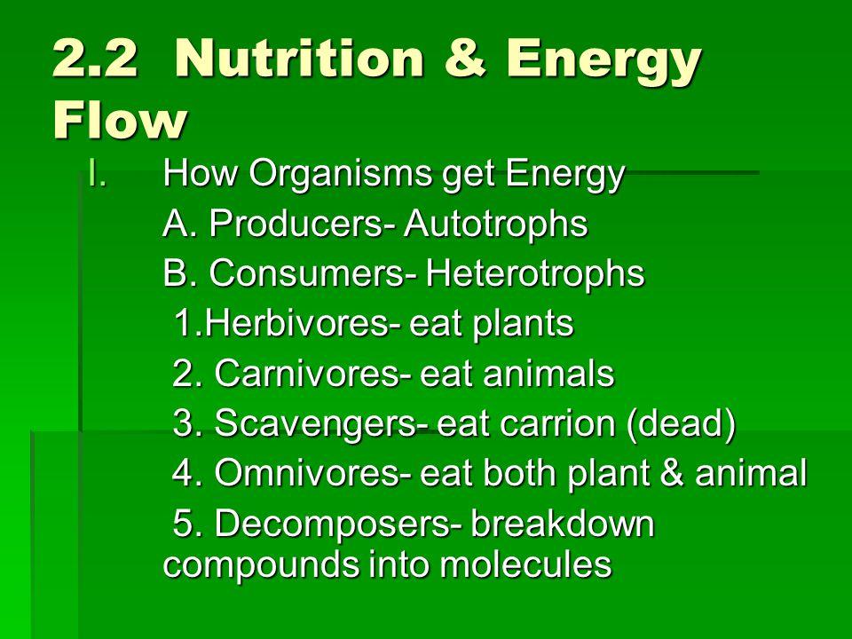 2.2 Nutrition & Energy Flow I.How Organisms get Energy A. Producers- Autotrophs B. Consumers- Heterotrophs 1.Herbivores- eat plants 2. Carnivores- eat