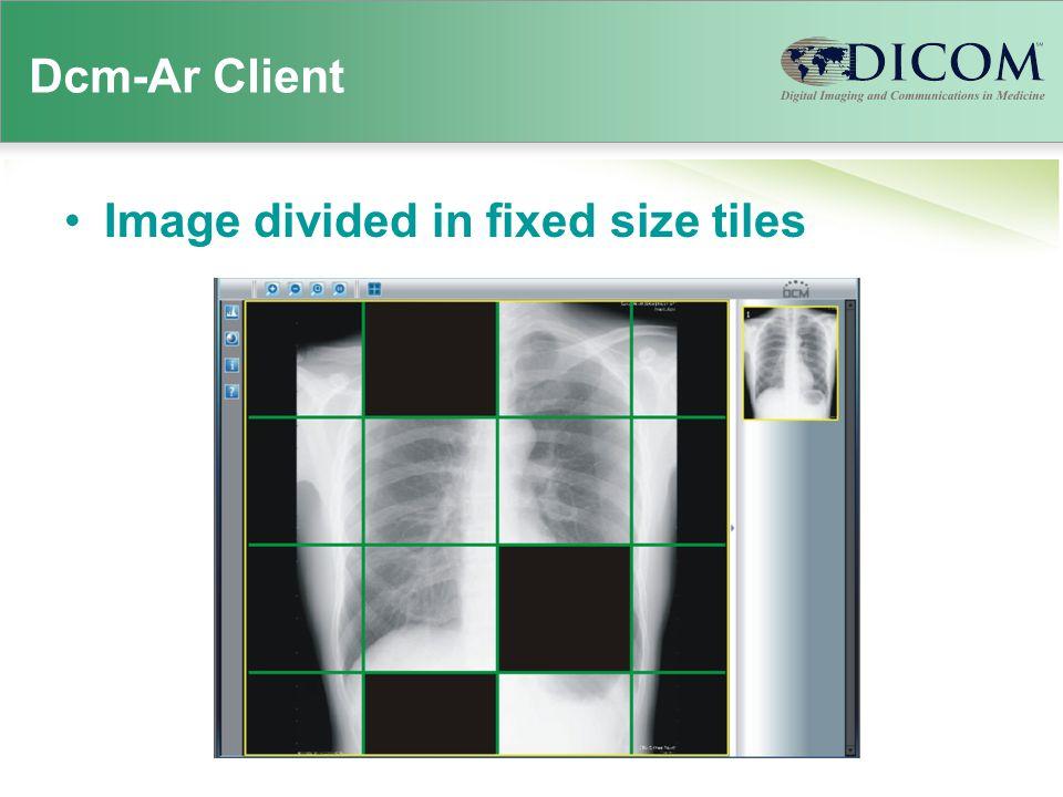 Dcm-Ar Client IOPIT Interactive - Optimized PIT
