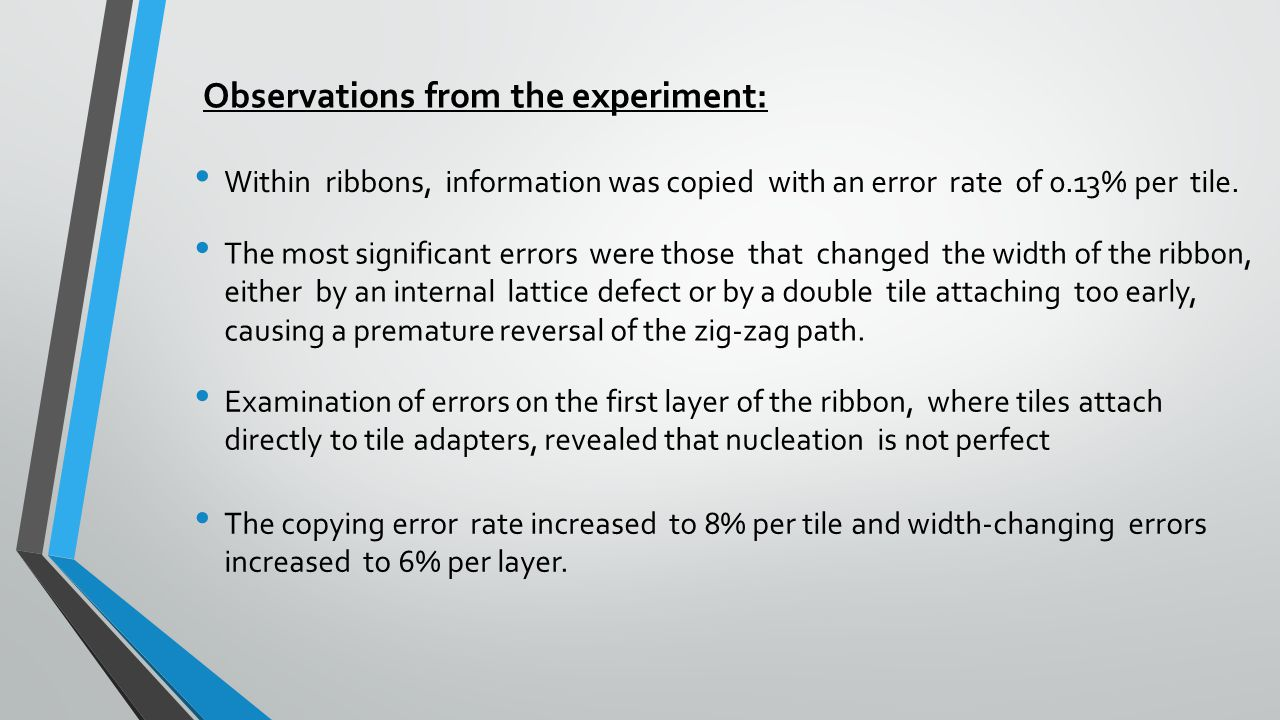 Observations from the experiment: Within ribbons, information was copied with an error rate of 0.13% per tile. The most significant errors were those