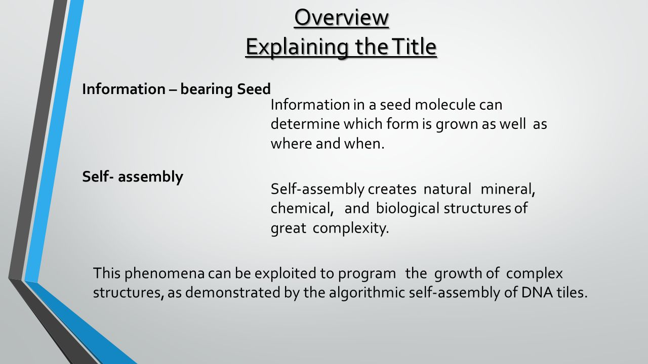 Overview Explaining the Title Information – bearing Seed Information in a seed molecule can determine which form is grown as well as where and when.