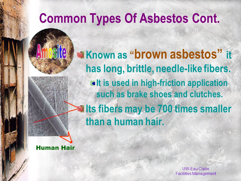 UW-Eau Claire Facilities Management Human Hair Common Types Of Asbestos Cont.