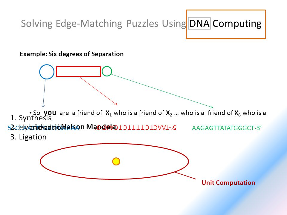 Solving Edge-Matching Puzzles Using DNA Computing Example: Six degrees of Separation So you are a friend of X 1 who is a friend of X 2 … who is a frie