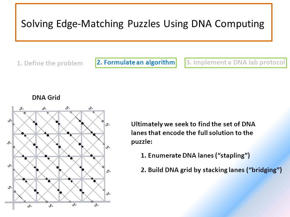 2. Formulate an algorithm3. Implement a DNA lab protocol 1. Define the problem Solving Edge-Matching Puzzles Using DNA Computing Ultimately we seek to