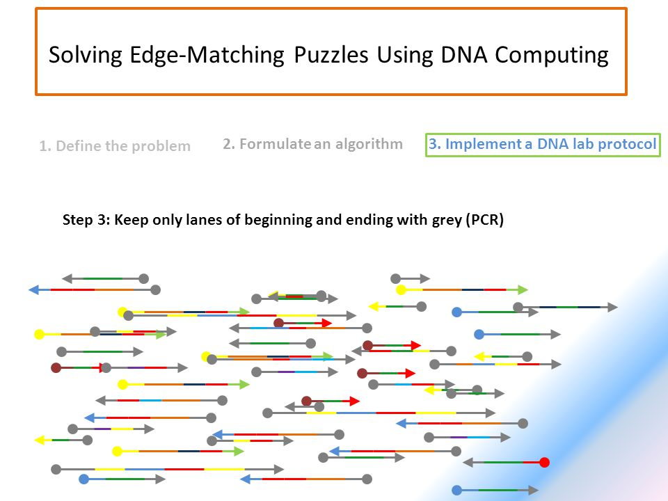 2. Formulate an algorithm3. Implement a DNA lab protocol 1. Define the problem Solving Edge-Matching Puzzles Using DNA Computing Step 3: Keep only lan