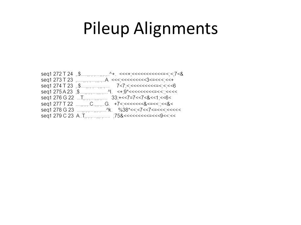 Pileup Alignments seq1 272 T 24,.$.....,,.,.,...,,,.,..^+. <<<+;<<<<<<<<<<<=<;<;7<& seq1 273 T 23,.....,,.,.,...,,,.,..A <<<;<<<<<<<<<3<=<<<;<<+ seq1