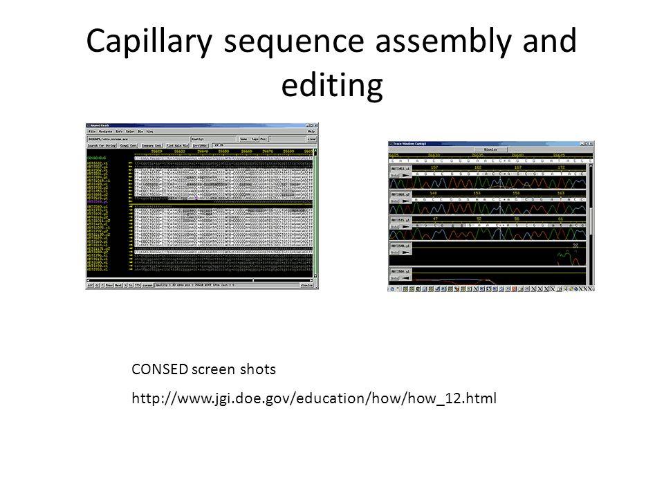 Illumina Sequencing machines GA-IIHiSeq