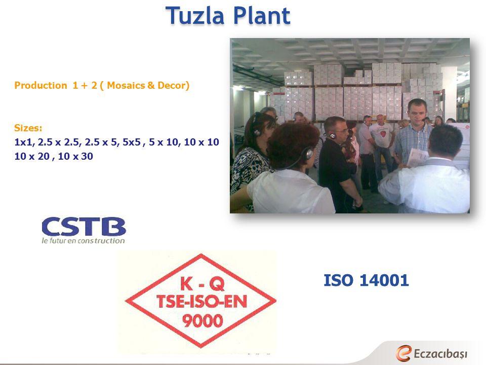Tuzla Plant Production 1 + 2 ( Mosaics & Decor) Sizes: 1x1, 2.5 x 2.5, 2.5 x 5, 5x5, 5 x 10, 10 x 10 10 x 20, 10 x 30 ISO 14001
