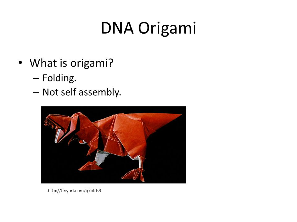 DNA Origami What is origami? – Folding. – Not self assembly. http://tinyurl.com/q7olds9