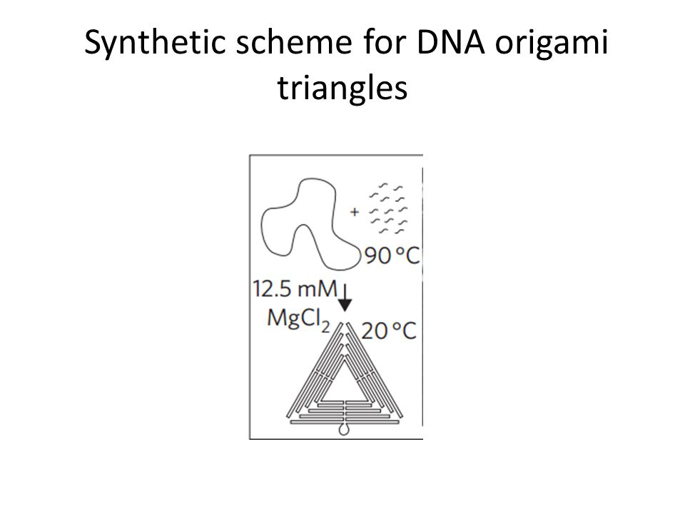 Synthetic scheme for DNA origami triangles