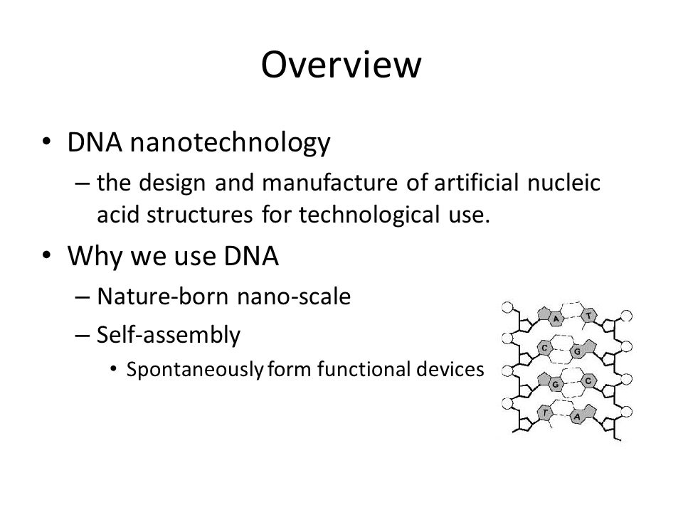Overview DNA nanotechnology – the design and manufacture of artificial nucleic acid structures for technological use.
