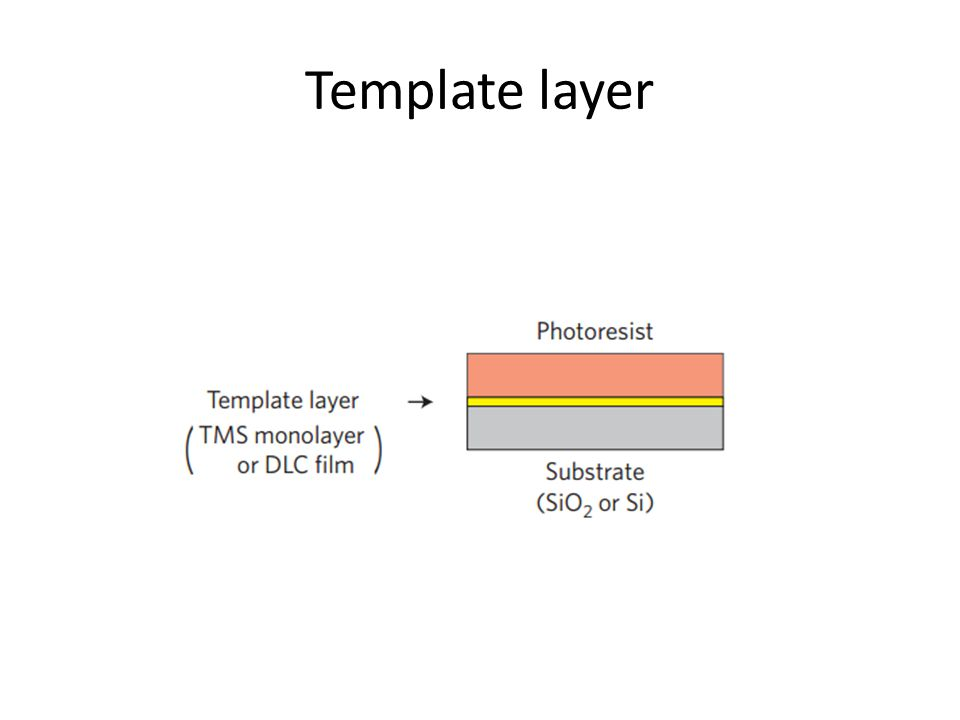 Template layer