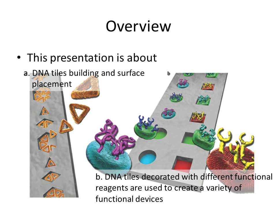 Overview This presentation is about a.DNA tiles building and surface placement b.