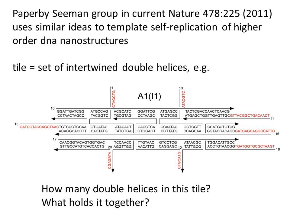 Paperby Seeman group in current Nature 478:225 (2011) uses similar ideas to template self-replication of higher order dna nanostructures tile = set of