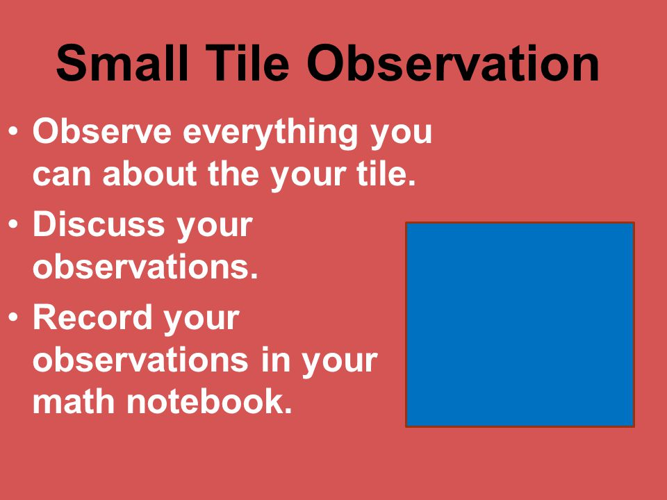 Small Tile Observation Observe everything you can about the your tile.