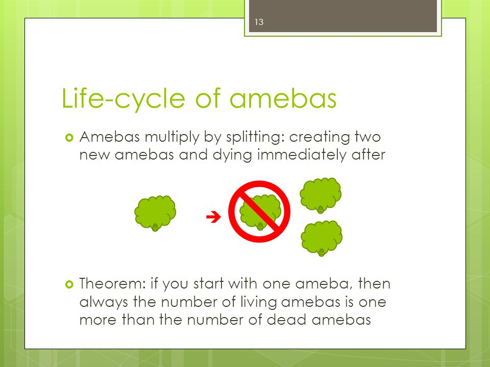 Life-cycle of amebas Amebas multiply by splitting: creating two new amebas and dying immediately after Theorem: if you start with one ameba, then alwa