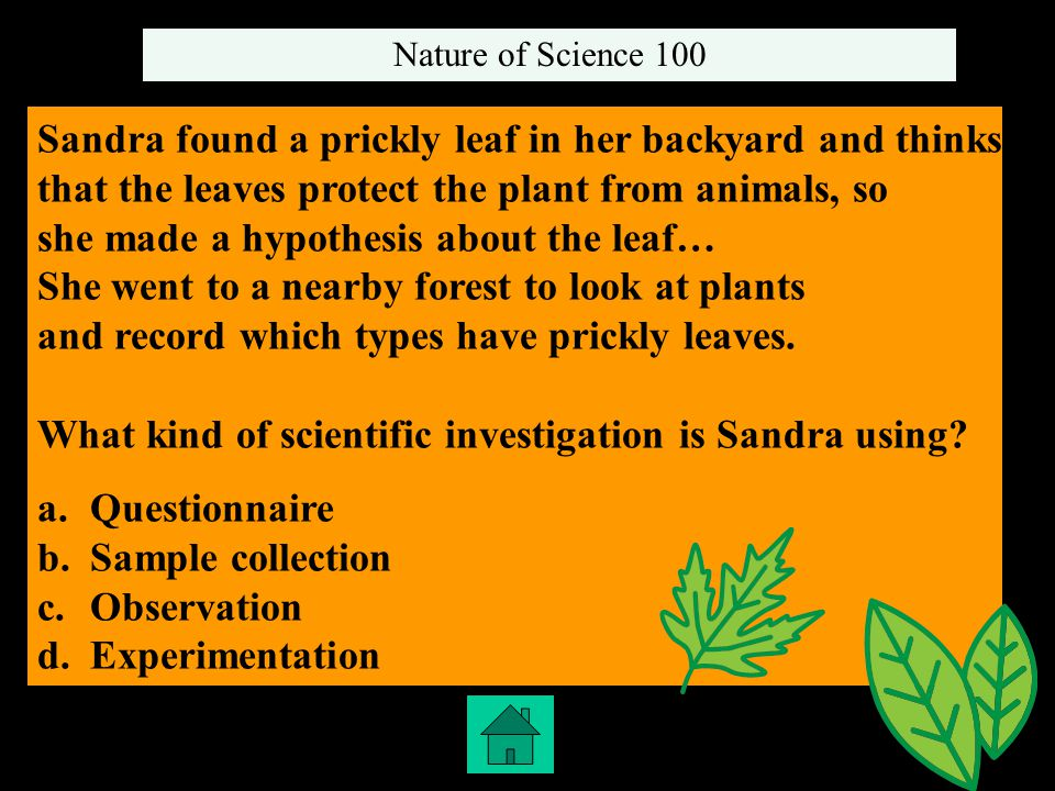 Sandra found a prickly leaf in her backyard and thinks that the leaves protect the plant from animals, so she made a hypothesis about the leaf… She went to a nearby forest to look at plants and record which types have prickly leaves.