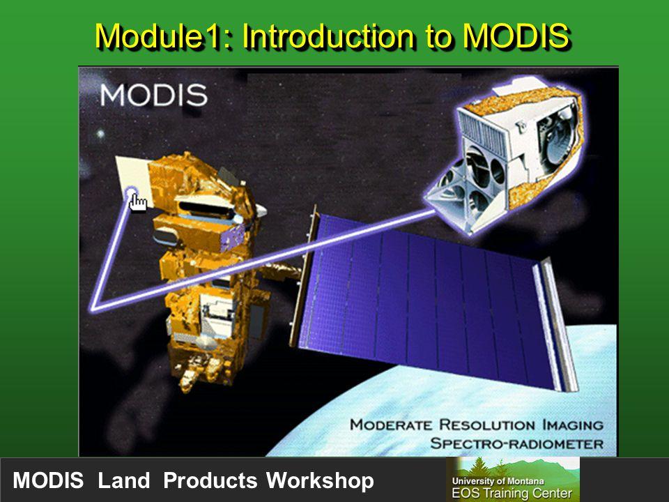 MODIS Land Products Workshop Level 3 Data = Best pixel selection (e.g.