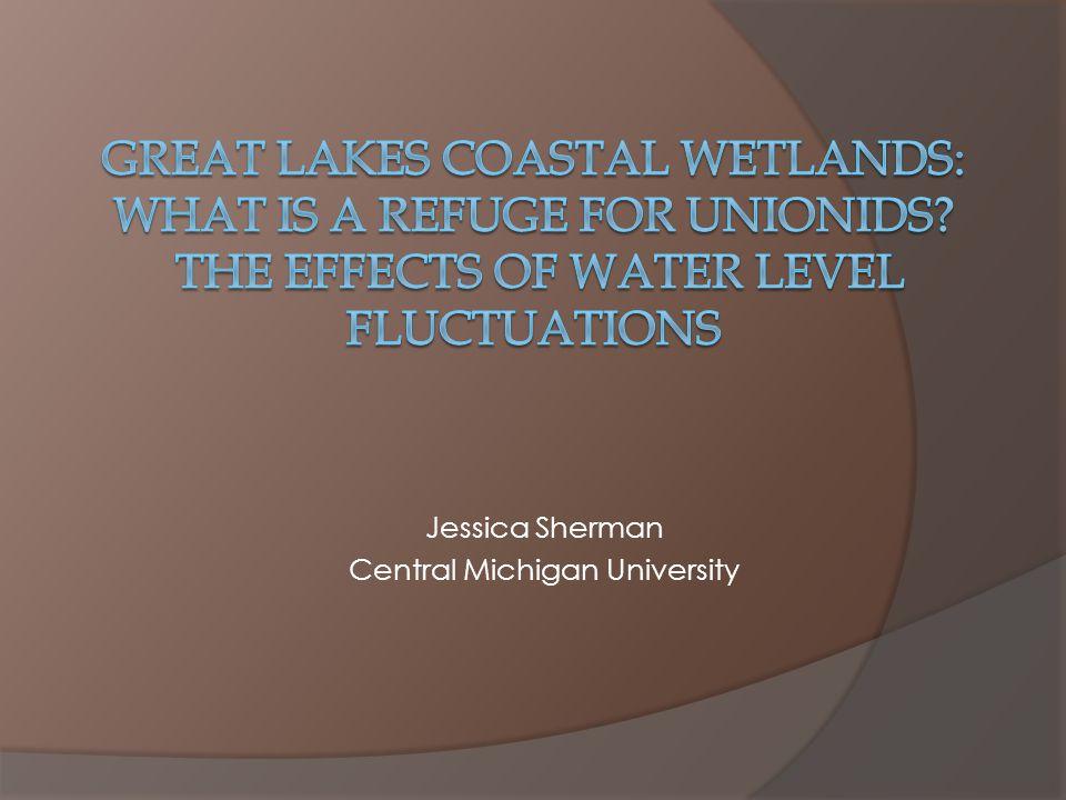 Jessica Sherman Central Michigan University