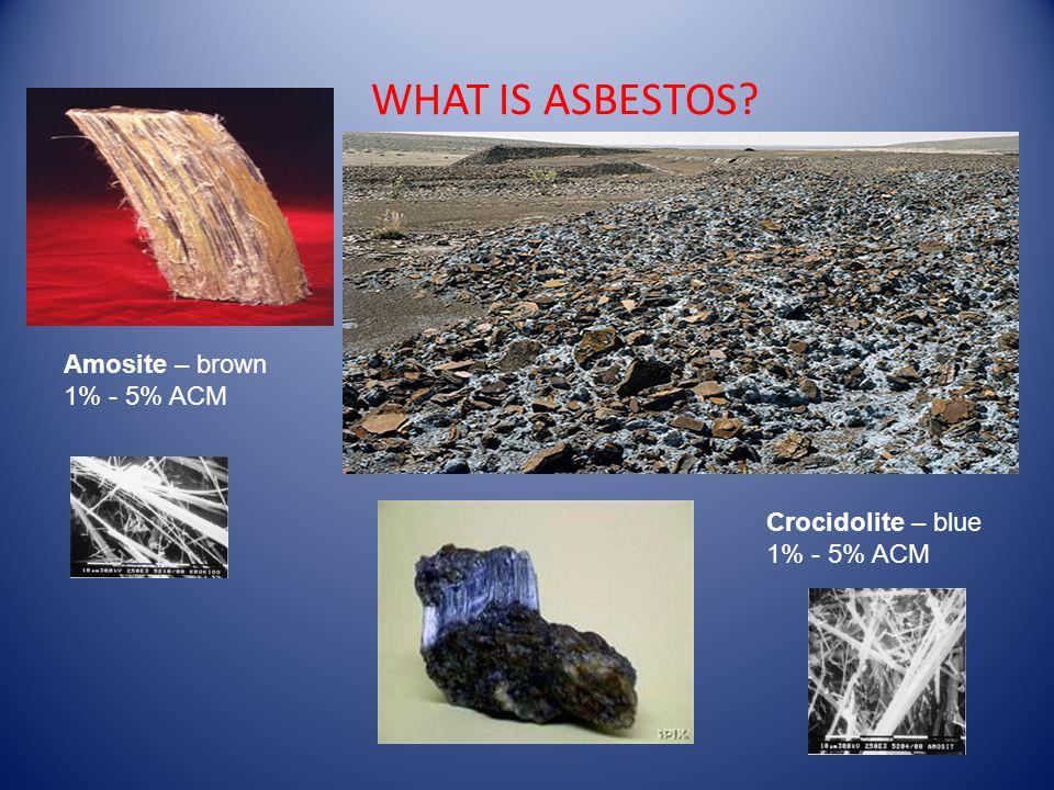 WHAT IS ASBESTOS Amosite – brown 1% - 5% ACM Crocidolite – blue 1% - 5% ACM