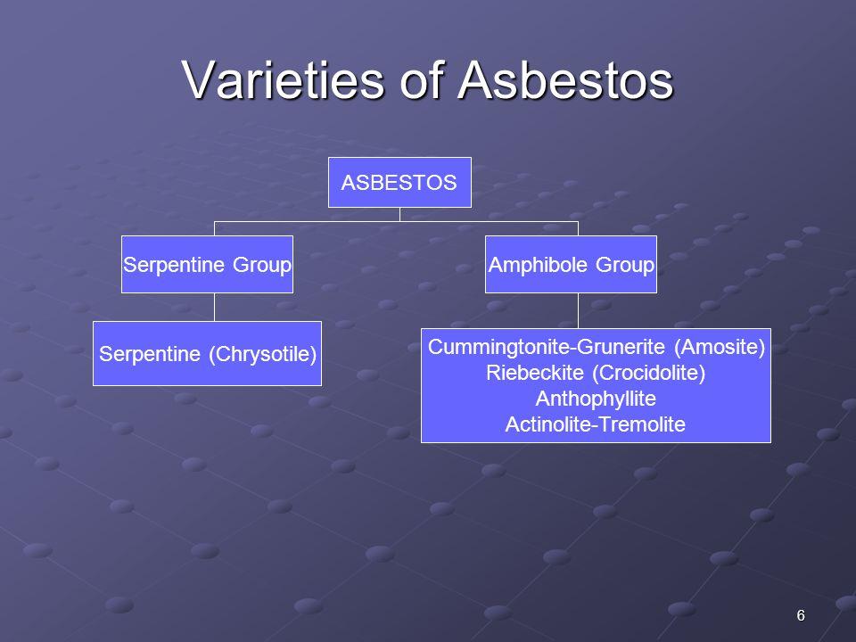 6 Varieties of Asbestos ASBESTOS Serpentine GroupAmphibole Group Serpentine (Chrysotile) Cummingtonite-Grunerite (Amosite) Riebeckite (Crocidolite) An