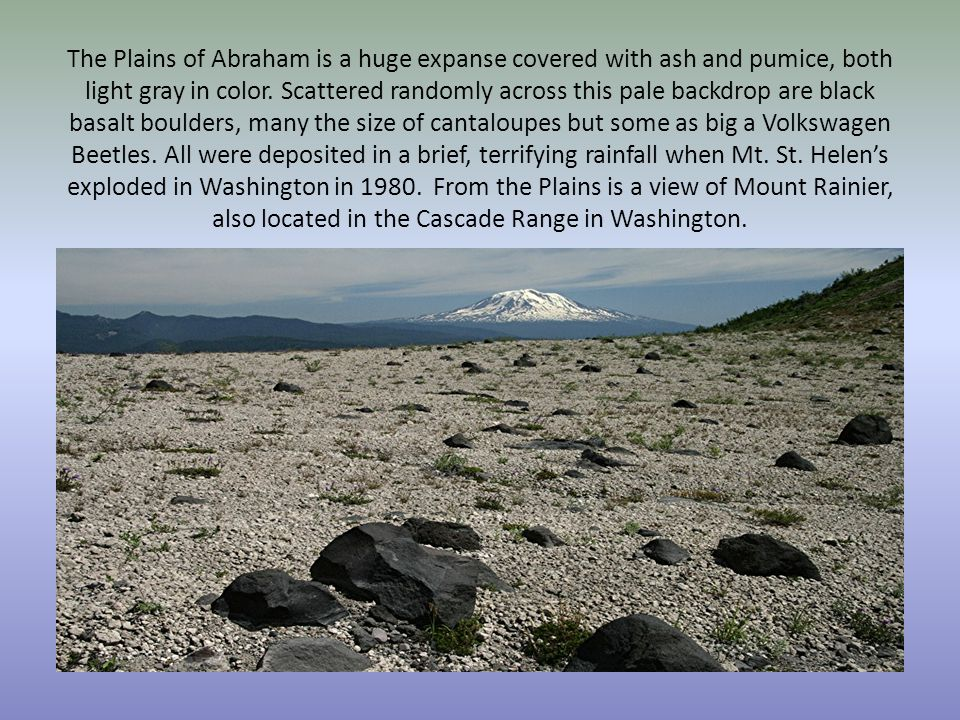 The Plains of Abraham is a huge expanse covered with ash and pumice, both light gray in color. Scattered randomly across this pale backdrop are black