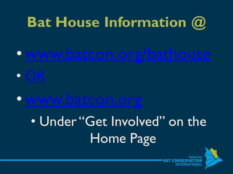 Bat House   OR   Under Get Involved on the Home Page