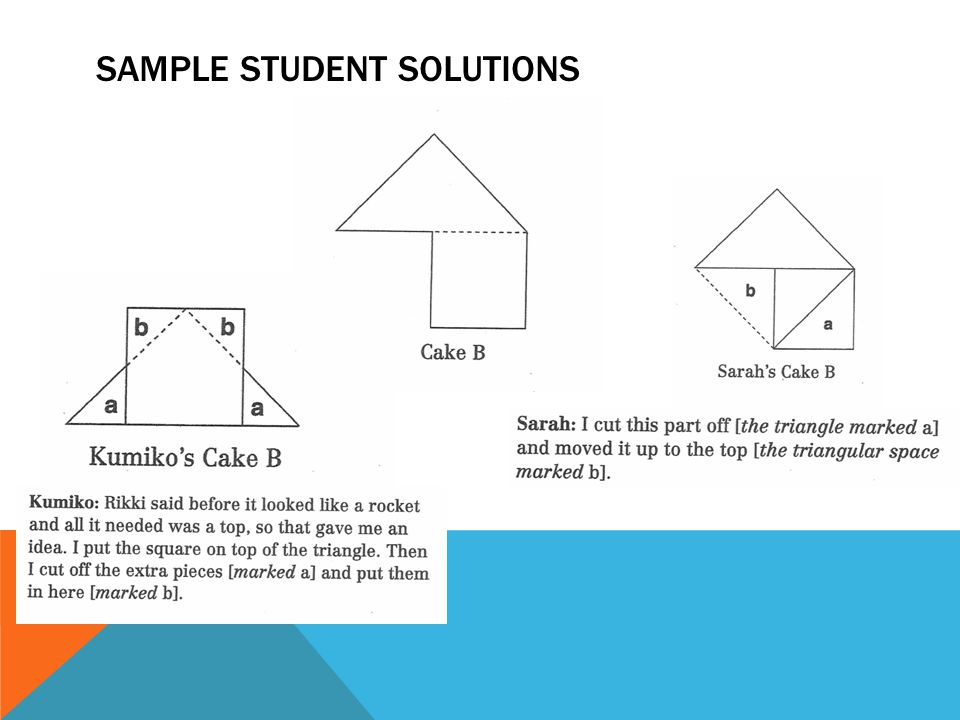SAMPLE STUDENT SOLUTIONS